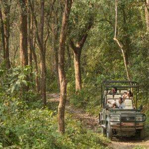 Jeep Safari in Chitwan